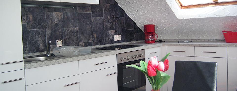 Moderne Einbauküchen